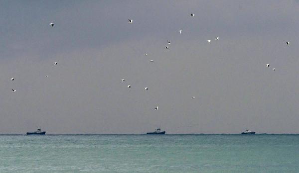 Los barcos de rescate durante las operaciones de búsqueda de los restos del avión este domingo (EFE)