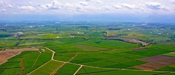 suescun_fuerte_desigualdad_distribucion_rural_propiedad