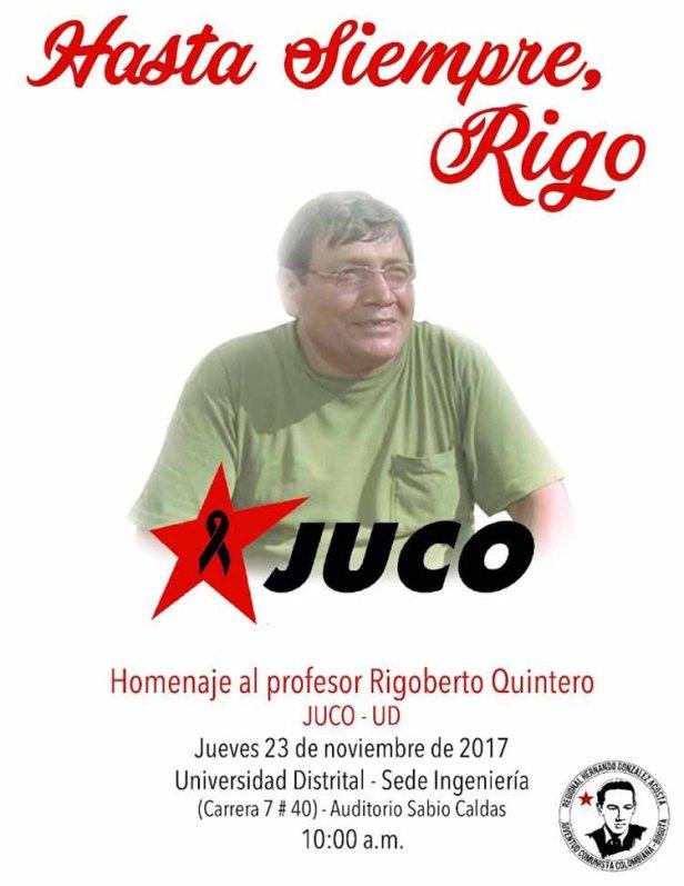 RIGO-2