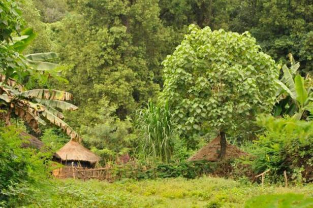 etiopia-3